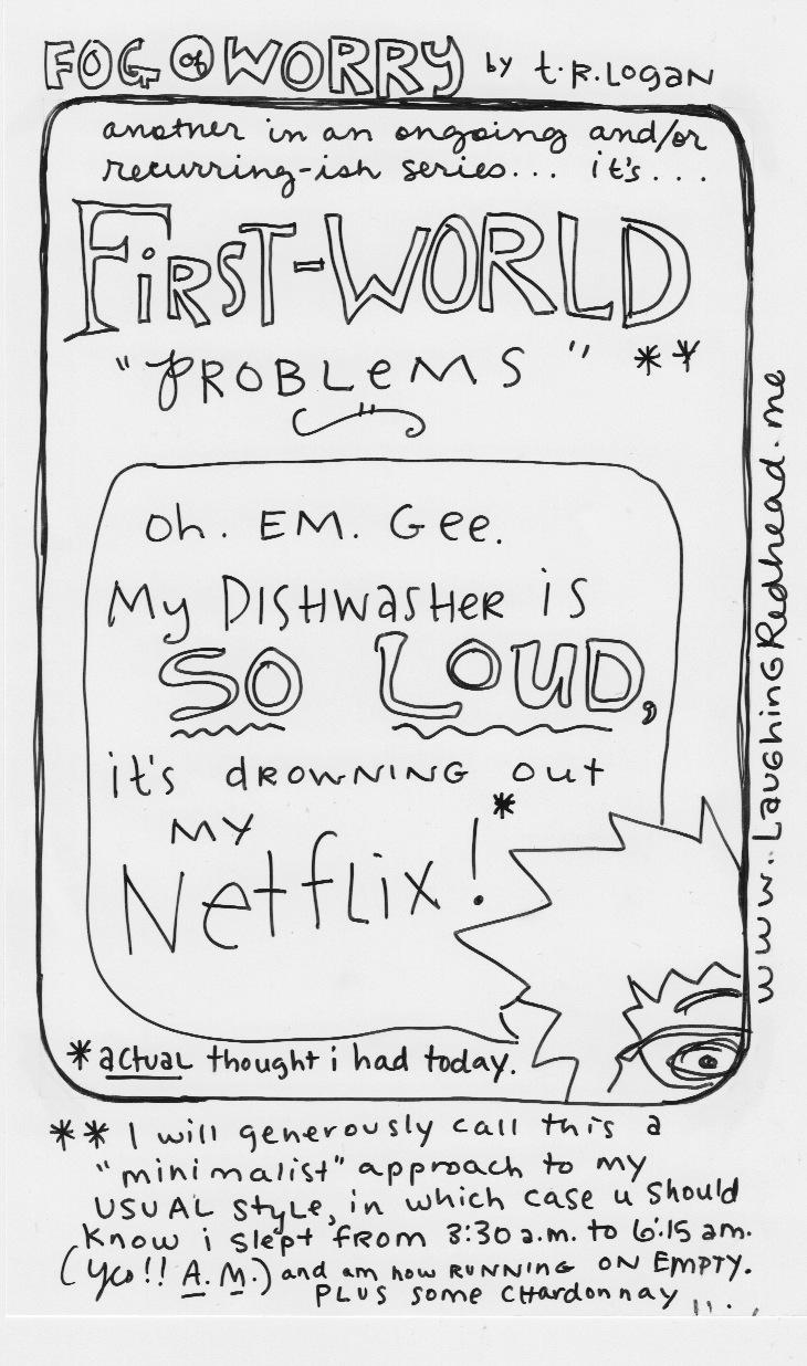 First World Problems - Dishwasher