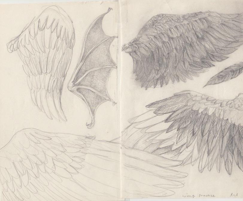wing practice 2
